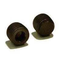 Socket Screw Pipe Plugs